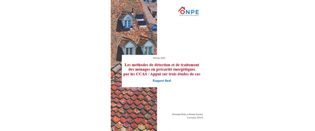 Analyse transversale CCAS Rapport final